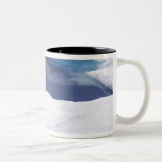 Arctic, Svalbard, Walrus being freindly Two-Tone Coffee Mug