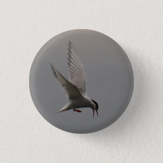 Arctic Tern Badge