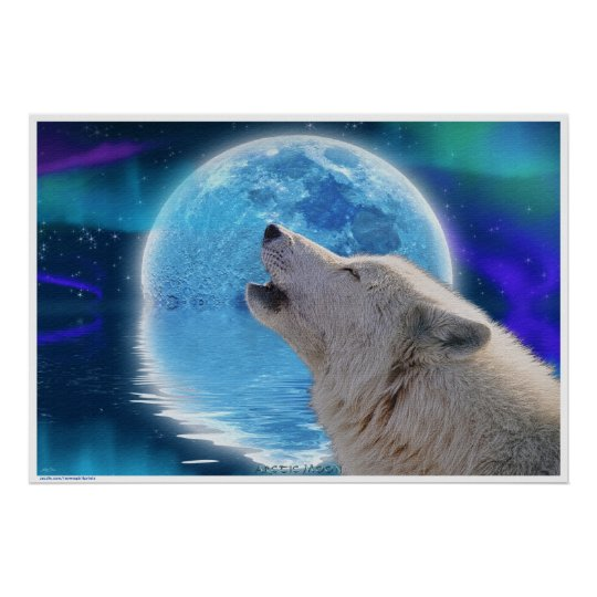 Arctic Wolf Howling at Aurora & Moon Wildlife