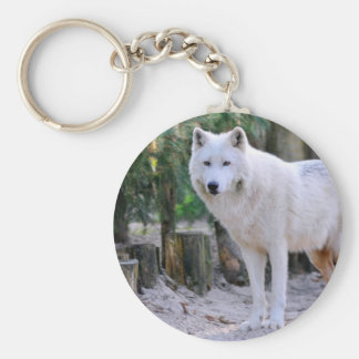 Arctic Wolf in the forest Basic Round Button Key Ring