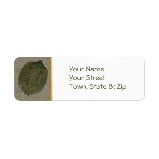 Arctinrus Boltoni Fossil Trilobite Return Address Label