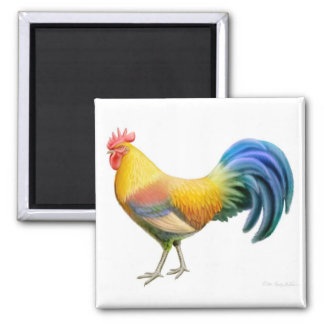 Ardenner Rooster Square Magnet