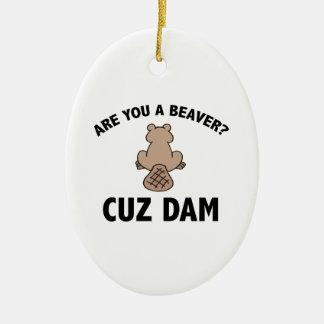 Are You A Beaver? Cuz Dam Ceramic Oval Decoration