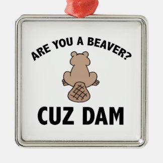 Are You A Beaver? Cuz Dam Silver-Colored Square Decoration