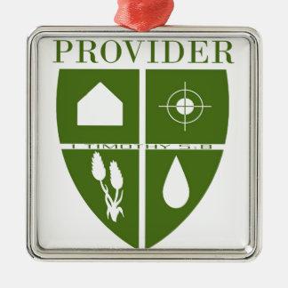 Are you a PROVIDER? Silver-Colored Square Decoration