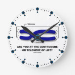 Are You At The Centromere Or Telomere Of Life? Wallclock