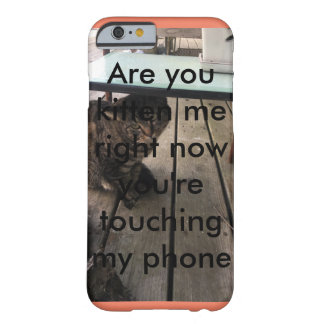 Are you kitten me phone case
