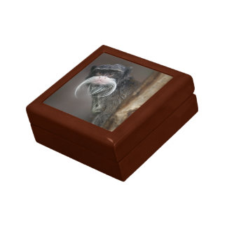 Are You My Barber? Gift Box