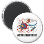Are You Paying Attention? (Neuron Synapse Humour) 6 Cm Round Magnet