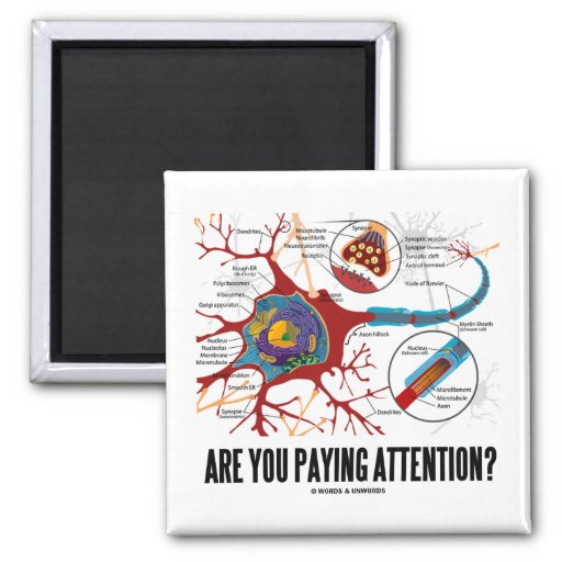Are You Paying Attention? (Neuron Synapse Humour) Square Magnet
