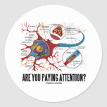 Are You Paying Attention? (Neuron Synapse Humour) Round Stickers