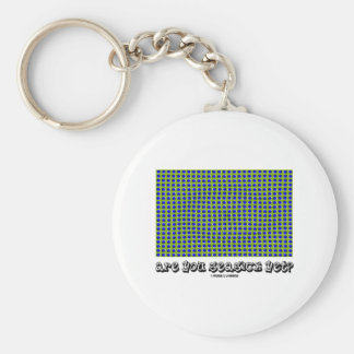 Are You Seasick Yet? (Motion Illusion) Key Chain