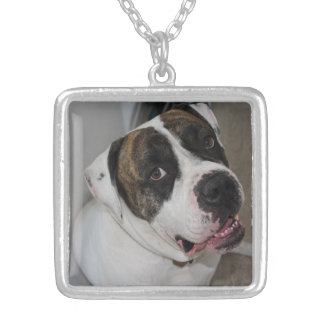 Argent Plaqué Square Collar has to personalize Silver Plated Necklace