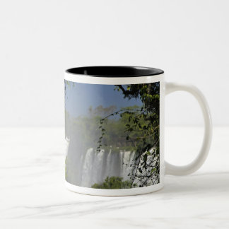 Argentina, Iguacu Falls in sun. 2 Two-Tone Coffee Mug