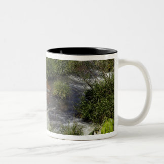Argentina, Iguacu Falls. Rainbow at Iguacu Two-Tone Coffee Mug
