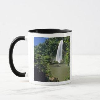 Argentina; Igwazu; Igwazu Falls. Salto Dos Mug