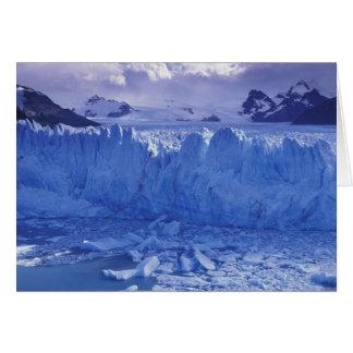 Argentina, Patagonia, Parque Nacional los Card