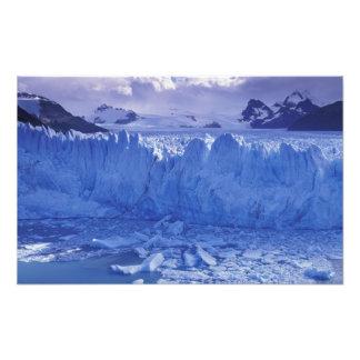 Argentina Patagonia Parque Nacional los Art Photo