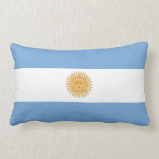 Argentinian flag pillow