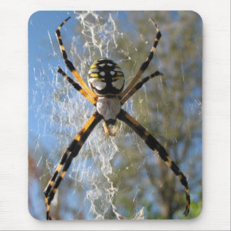 Argiope spider mouse mat