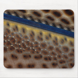 Argus Pheasant Feather Close Up Mouse Mat