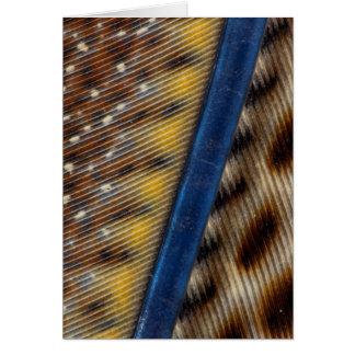 Argus Pheasant Feather Detail Card