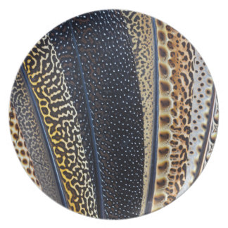 Argus Pheasant wing feathers Plate