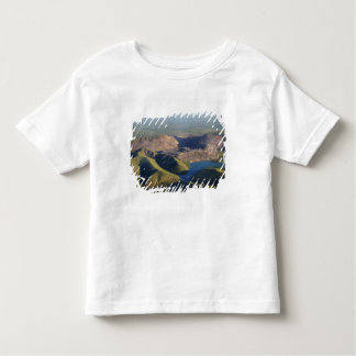 Argyle Diamond Mine Toddler T-Shirt