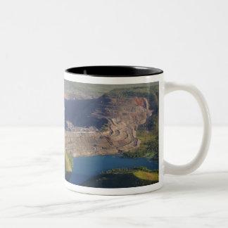 Argyle Diamond Mine Two-Tone Coffee Mug