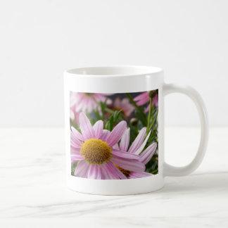 Argyranthemum frutescens Marguerite Daisies Basic White Mug