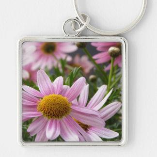 Argyranthemum frutescens Marguerite Daisies Key Chain