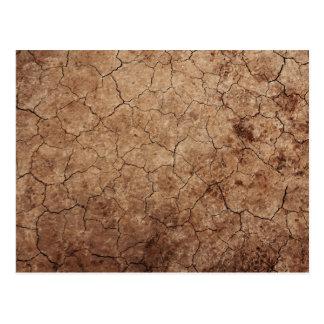 Arid Dry Cracked Earth Postcard