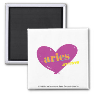 Aries 2 magnets