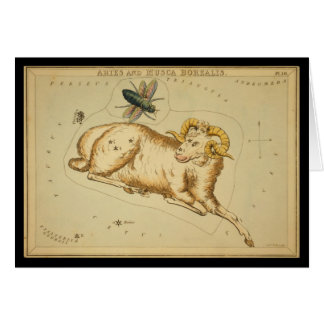 Aries and Musca Borealis Card