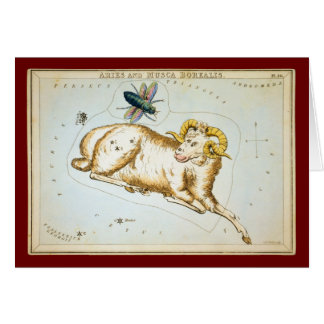 Aries and Musca Borealis Greeting Card