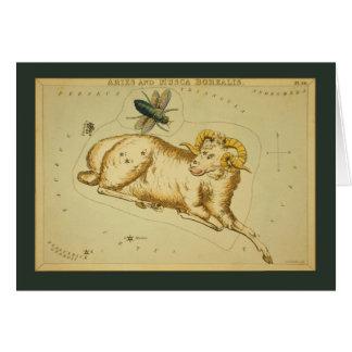 Aries Constellation Card