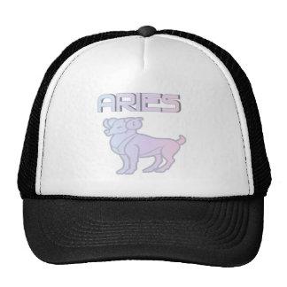 Aries Pastels Cap