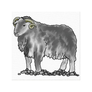 Aries Ram Herdwick Sheep Art Canvas