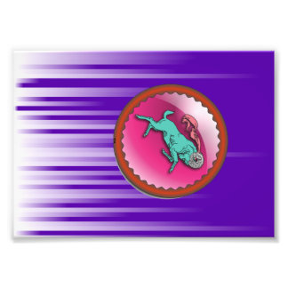 Aries Sun Sign Zodiac Astrology Art Photo