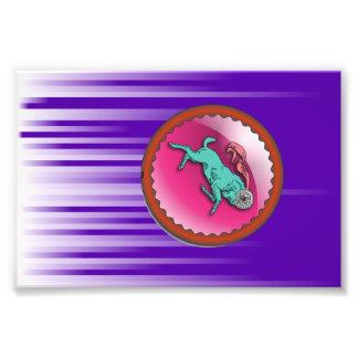 Aries Sun Sign  Zodiac  Astrology Photograph