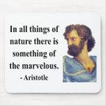 Aristotle Quote 5b