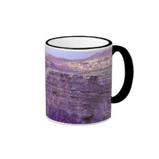 'Arizona 561' Ringer Mug