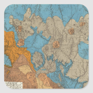 Arizona 5 square sticker