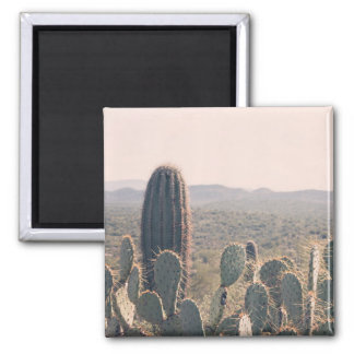Arizona Cacti  | Magnet