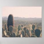 Arizona Cacti | Poster