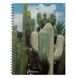 Arizona Cactus Notebooks