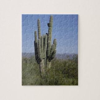 Arizona Cactus Puzzle