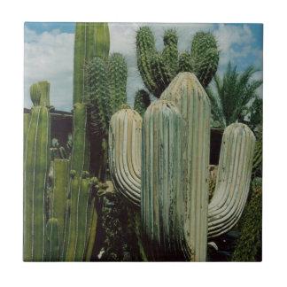 Arizona Cactus Tile