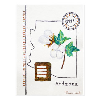 Arizona Cotton Postcard