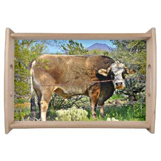 Arizona Cow Serving Tray
